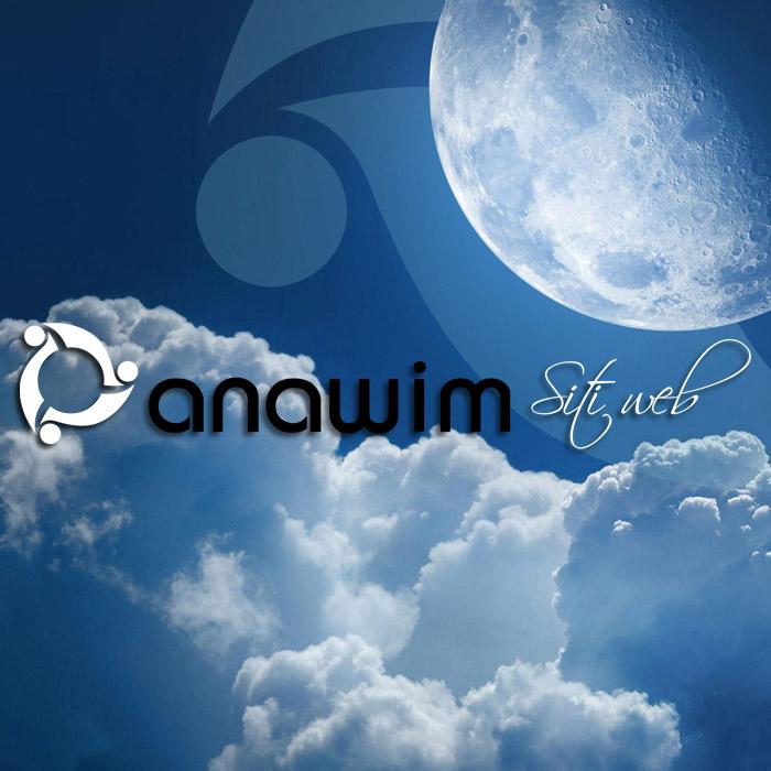Anawim realizza siti web